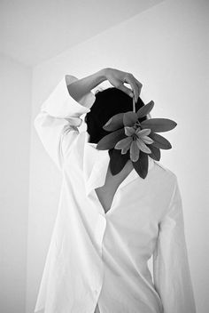 Mirella Bruno Visual Acoustics.