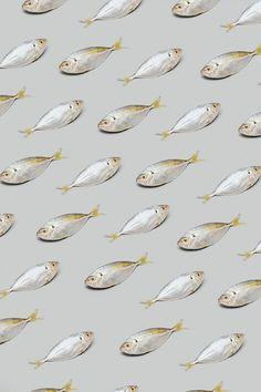 Photo Pattern, Pattern Art, Food Patterns, Textures Patterns, Tapas, Surface Design, Surface Pattern, Food Illustrations, Background Patterns