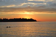 Summer evening, Parksville Bay