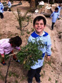 Nuestros alumnos en el huerto de la Escuela http://www.museopusol.com/es/actividad/?id=86&cat=10&dat=11%202014