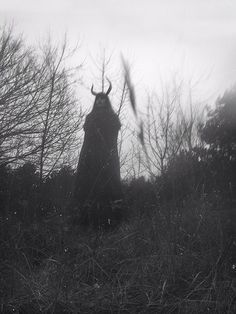 by Nona Limmen