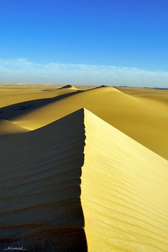 I'm the Rider of the Sand Dunes... Egypt