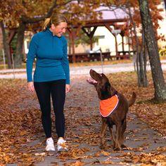 Kurgo Dog Products - Reflect and Protect Active Dog Bandana, $20.00 (http://www.kurgo.com/dog-jackets/reflect-and-protect-active-dog-bandana/)