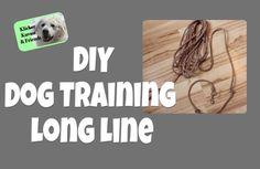 A long line is an essential tool for training your dog. They are also very simple to make. Just make sure that you regularly check your lines for wear or dam...