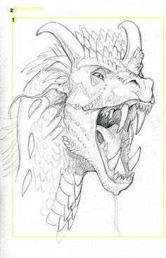 how to draw dragons [ drawing tutorial dragon sketch art ] Animal Drawings, Cool Drawings, Drawing Sketches, Pencil Drawings, Cool Dragon Drawings, Dragon Head Drawing, Sketching, Drawings Of Dragons, Drawing Pictures