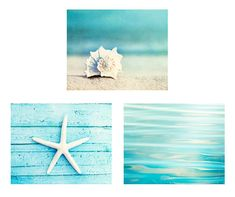 Beach Print Set - Set of 3 Photographs, aqua photo set ocean sea seashell starfish photography white seashore coastal wall art - Home Decor Like Coastal Wall Art, Coastal Decor, Azul Tiffany, Beach Canvas, Beach Room, Beach Print, Beach Photography, Photography Tips, Nature Photography