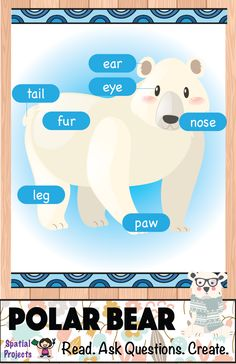 Parts of the Polar bear (Arctic Animal) - Inquiry-based learning *Includes lapbook making guide, craft pattern, worksheets, reading passages, fun facts