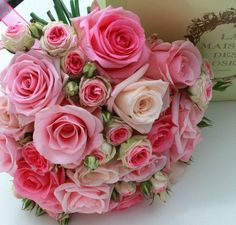 Like the different shades and types of garden roses