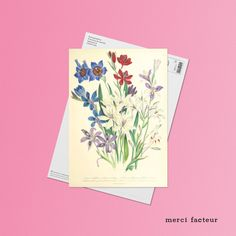 Quelques Photos, Avril, Mai, Place, Nice Map, Colorful Flowers, Pretty Flowers, Illustrated Maps, Flower Cards