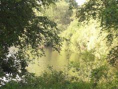 Klein Frankrijk near Leende 8-6-2014 beautiful nature