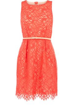 Oasis Shop | Coral Orange Lily Lace Dress | Womens Fashion Clothing | Oasis Stores UK
