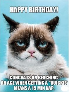Would Grumpy Cat Like You? Do you think you're a cat whisperer? Well not until you've encountered Grumpy Cat! Find out if you'd even have a chance being friends with this frowning feline. I suppose. Grumpy Cat Quotes, Funny Grumpy Cat Memes, Funny Animal Jokes, 9gag Funny, Cute Funny Animals, Funny Cats, Funny Memes, Angry Cat Memes, Funny Quotes