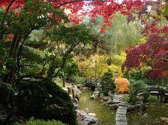 Hillwood Estate Japanese Garden in Fall