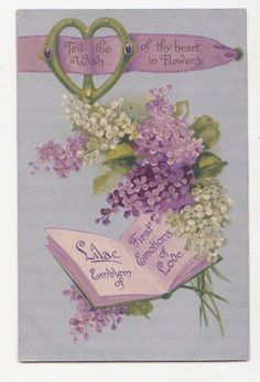 White and purple lilac in the language of flowers was powerful stuff.