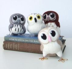 owls @Arynn Thoma Haws cutest darn animals i think i've seen, except they're not real