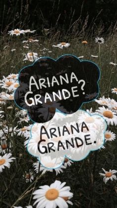 Ariana Grande?  Ariana Grande.