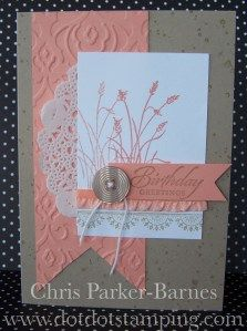 ---like this color combo with the Wetlands set....Birthday Greetings