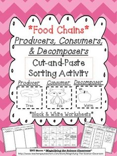 Students sort and match pictures with labels into three categories to show what they have learned about Producers, Consumers, and Decomposers in a food chain!  Reinforce and assess their learning by using a fun cut-and-paste activity!Included in Set:1.