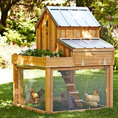 Cedar Chicken Coop with Planter -Effortless egg extraction in a small space- I want this for my girls! AND it comes with a space for me to grow the plants they like!