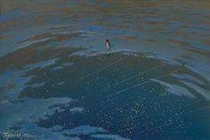 Toshio Ebine: Observation of Meteor