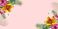 Tropical pink banner with design space vector | premium image by rawpixel.com Abstract Backgrounds, Wallpaper Backgrounds, Vector Design, Vector Art, Coconut Vector, Summer Banner, Free Illustrations, Flower Illustrations, Wallpaper Pictures