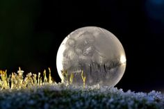 """Frozen Bubbles Photography - La photographe Angela Kelly basée à Washington a profité des températures glaciales de ce début d'année pour réaliser cette série """"Frozen Bubble"""", proposant d'immortaliser la transformation de bulles de savon en fragiles sphères glacées. De magnifiques créations à découvrir dans une série d'images dans la suite."""