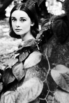 "Audrey Hepburn - photographed by Leo Fuchs ""1958"""