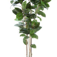 光触媒人工観葉植物、フェイクグリーンのインドゴムノキ 9237