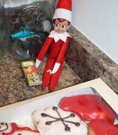 Elf on the shelf idea....DONUTS!