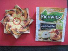 Pickwick theezakjes zuidvruchten