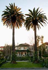 new book love: the great american house by gil schafer... - Velvet & Linen