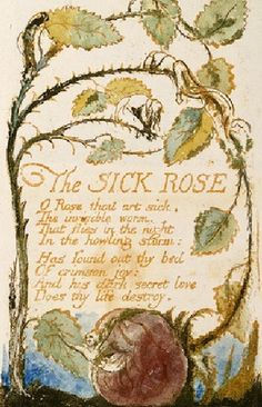 The Sick Rose, William Blake's Songs of Innocence