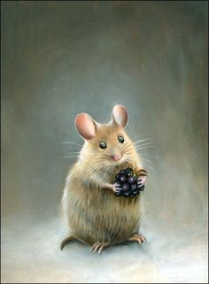 mouse-study