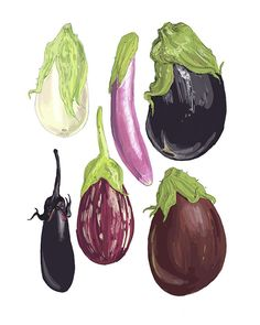 Eggplants Illustration Reproduction 8 x 10 by drenculture on Etsy, $15.00