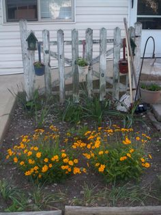 I need to find an old picket fence like this to put in front flower bed.