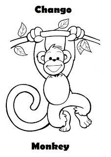 Animales de la Selva para dibujar: Chango. Monkey.