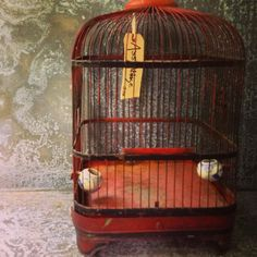 Fly Fly Away / Bird Cage / Wedding Bank by assemblage333 on Etsy, $75.00
