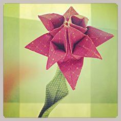 Kaktus Blüte Origami (by zizy ziegler)