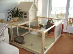 fantastic set up, lovely size. great for an indoor bun