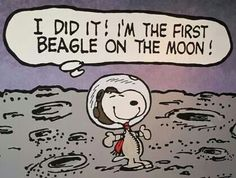 Snoopy on the moon