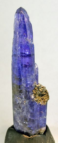 05EDD293A Zoisite var. Tanzanite Sold Merelani Hills, Umba Valley, Arusha District, Tanzania ex. Dr. Edward David Small Cabinet, 8.1 x 2.0 x 1.4 cm A VERY showy, very blue, natural tanzanite that shows well the purple and blue dichroism inherent in the species from this locality. It is either natural in color or lightly heated to enhance the blue hue (a common practice there and considered acceptable by many collectors if price is adjusted accordingly). The purple hue is not as intense and…