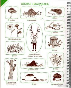 Find with kids in a forest by Z Surova<br> Nature Activities, Craft Activities, Family Day Care, Learn Russian, Play Based Learning, Forest School, Nature Study, Teaching Kindergarten, Reggio Emilia