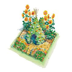 A kids veggie garden plan.  Really want to have gardens this summer