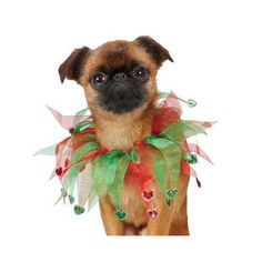 "Amazon.com: Holiday Heart Scrunchy Dog Neckware Size: Medium (11.5"" H x 4"" W x 0.1"" D): Pet Supplies"