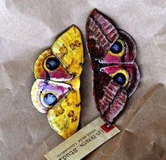 Specimen No 11  Female Io Moth  Hand Enameled by LiaBowenStudio, $175.00