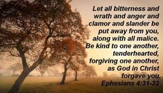 Daily Pearl: Ephesians 4:31-32– Why is Anger and Aggression between Christians particularly bad?