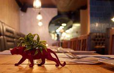 Healthy #restaurants in #Toronto