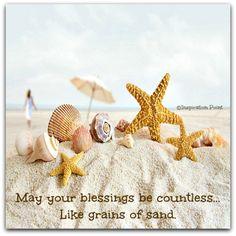 Sand n shells