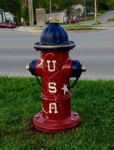 Primitive Patriotic Fire Hydrant on Walnut St. (Back)
