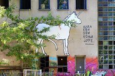 Kuda svi ovi konji jure. / DLT / Inex Film Expedition #BeogradskiGrafiti #StreetArt #Graffiti #Beograd #Belgrade #Grafiti
